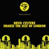 Drvg Cvltvre – Snakes The Size Of London [NUR23406]