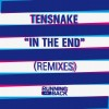 Tensnake – In The End (Remixes) [RB0155]