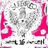 VA – Sweet 16: A Superfreq Compilation [SFDLP0032018]