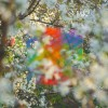 Four Tet – Teenage Birdsong