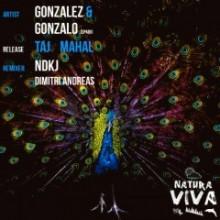 Gonzalez-Gonzalo-Spain-Taj-Mahal-NAT176-240x240