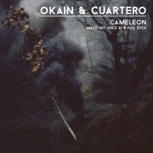 Okain-–-Cameleon