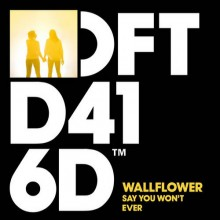 Wallflower-–-Say-You-Wont-Ever