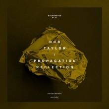 Dub-Taylor-–-Reflection