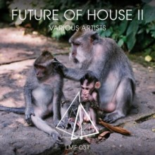 1429448822_va-future-of-house-ii-2014