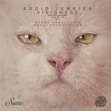 Audio-Junkies-Haptic-–-Vividness