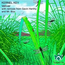 Kernel-Key-Vetiver-TULIPA119