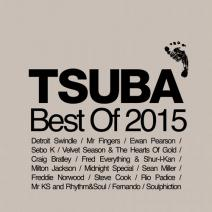 Best-Of-2015-TSUBACD030