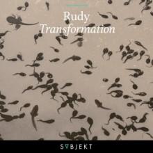 Rudy-Transformation