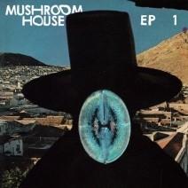 VA-Mushroom-House-EP1-TOYT052