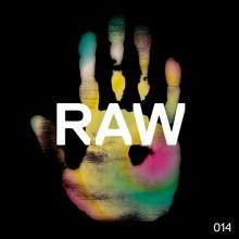 landmark-raw-014