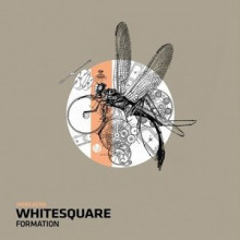 Whitesquare-Formation-MOBILEE188