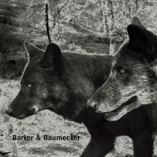 [OSTGUTCD022] - Barker & Baumecker - Transsektoral (OSTGUTCD022) - WEB - 2012
