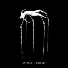 Amirali-Odyssey-DM007