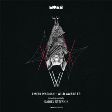 emery-warman-wild-awake-ep