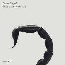 Dave-Angel-Scorpion-Orion-BEDDIGI71