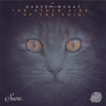 Harvey-McKay-The-Other-Side-Of-The-Void-EP-SUARA330