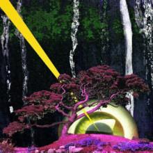 Medu – Sekret Garden