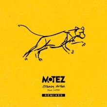 Motez - Steady Motion Remixes