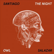 Santiago Salazar - The Night Owl (Love What You Feel)