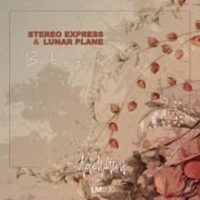 Stereo Express & Lunar Plane - Babayani (Love Matters)