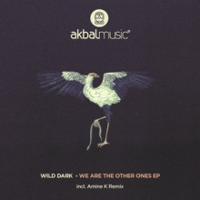 Wild Dark - We Are The Other Ones EP (Akbal Music)