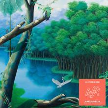 Supreems - Amygdala (Nice Age)