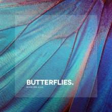 Boris Brejcha - Butterflies (Ultra)