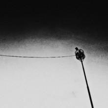 Joonam - Tightrope (Vakant)