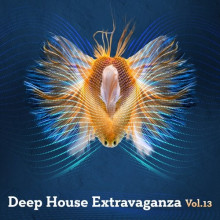 VA - Deep House Extravaganza, Vol.13 (Tronic Soundz)
