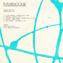 VA - Summer Riot VIII (Futureboogie)