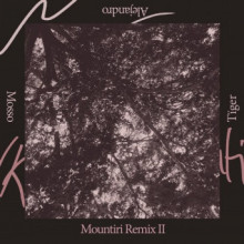 Rey&Kjavik - Mountiri Remix II (RKJVK)