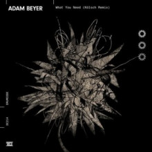 Adam Beyer - What You Need (Kölsch Remix) (Drumcode)