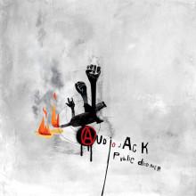 Audiojack - Public Disorder (Gruuv)