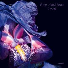 VA - Pop Ambient 2020 (Kompakt)