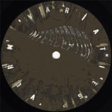 Alden Tyrell - Vorm Variaties 4 (Clone Basement Series)