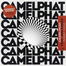 CamelPhat, Jem Cooke - Rabbit Hole (RCA Records Label)