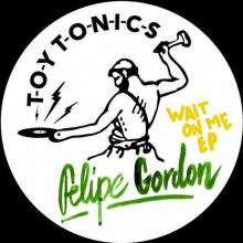 Felipe Gordon - Wait on Me (Toy Tonics)