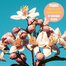 Padre - Flower And Willow World (Of Norway Version) (Connaisseur)
