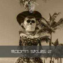 VA - Porn Skulls 2 (Skull And Bones)