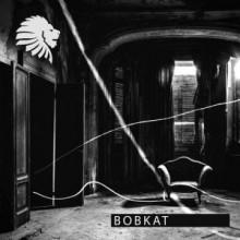 Sisko Electrofanatik, Alex Rubino - Bobkat (Extended) (We Are The Brave)