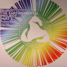 Franck Roger - The Earthrumental Project (Part 5) (Real Tone)