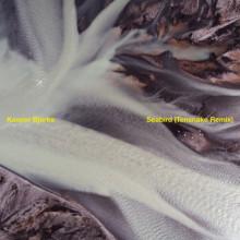 Kasper Bjørke - Seabird (Tensnake Remix) (hfn music)
