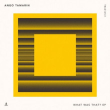 Ango Tamarin – What Was That? (Truesoul)
