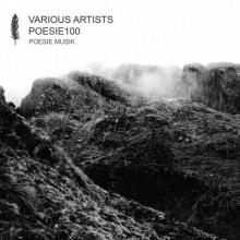 VA - POESIE100 (Poesie Musik)
