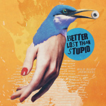 Better Lost Than Stupid - Wild Slide (Remixes) (Skint)