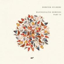 Dominik Eulberg - Sechslinien-Bodeneule (Anna Remix) (!K7)