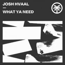 Josh Hvaal - What Ya Need (Hottrax)