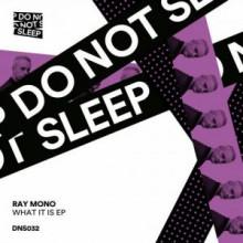 Ray Mono - What It Is EP (Do Not Sleep)