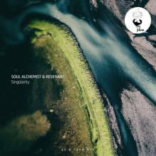 Soul Alchemist & Revenant - Singularity (Us & Them)